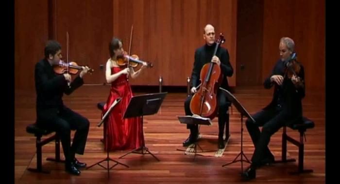 Haydn, Cuarteto de cuerdas